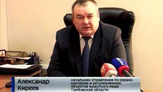 Александр Киреев, начальник Управления по охране, контролю и регулированию объектов животного мира Тамбовской области