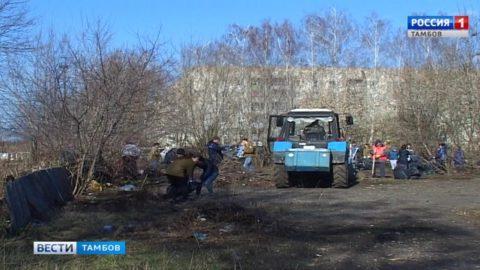 Участники субботника в Тамбове расчистили спортивную площадку