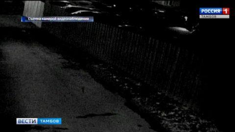 В одном из дворов Тамбова сгорел мусорный бак: пострадали 2 иномарки