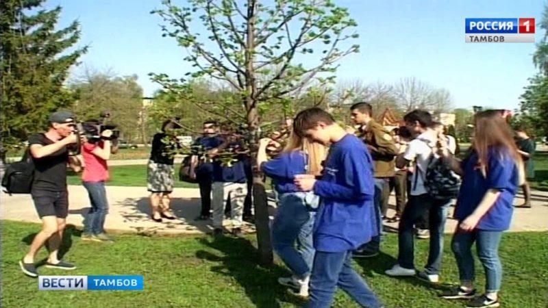 Деревья в парке Победы украсили колокольчики