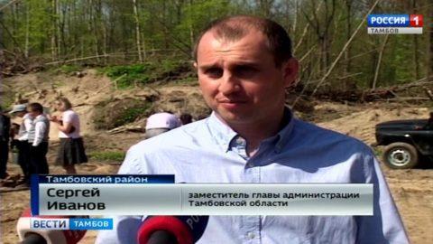 10 тысяч молодых сосен высадили в Тамбовском лесничестве