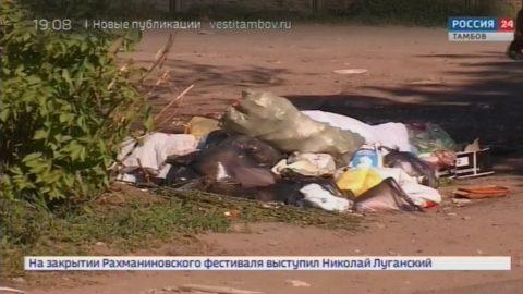 Уборка по договору: как избавить дачные посёлки от мусора