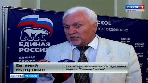 Евгений Матушкин, секретарь регионального отделения партии «Единая Россия»