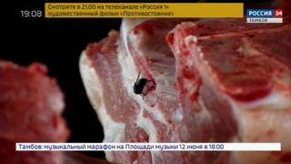 Мясо с «душком» на радость мухам: сотрудники Россельхознадзора проверили магазин в Заворонежском