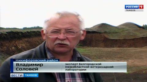 Владимир Соловей, эксперт ФГБУ «Белгородская межобластная ветеринарная лаборатория»