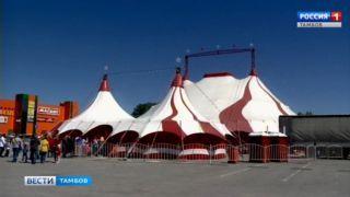 Впервые в Тамбове - цирк «Гранд» с шоу-программой «Волки в городе»