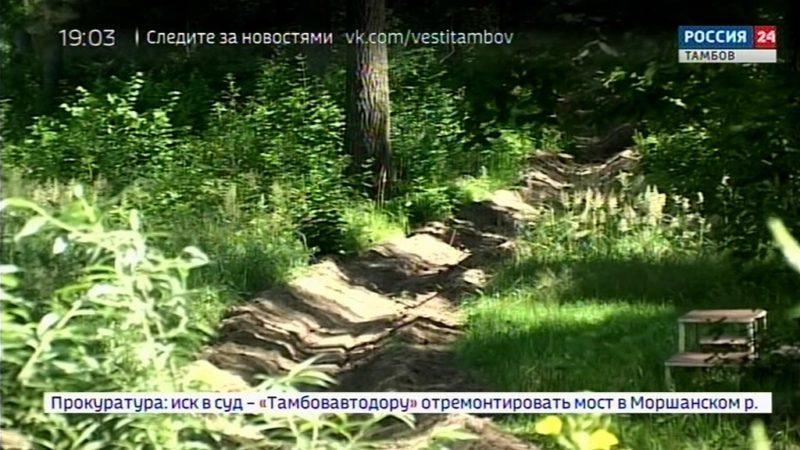 В регионе ограничено посещение лесов