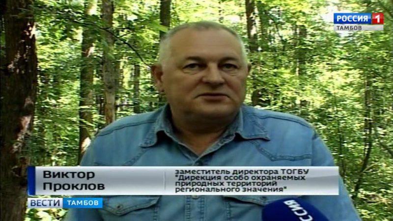 Тамбовчане присоединились ко Всероссийской акции «Зеленый маршрут