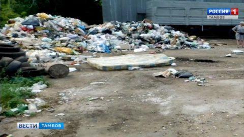 В Тамбовском районе нашли тело новорождённого ребенка