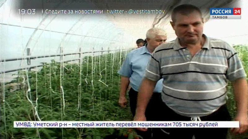 Областной семинар по выращиванию овощей в теплицах провели в Мичуринске