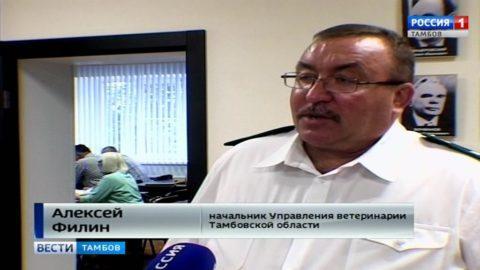 За три месяца ветинспекторы оштрафовали нарушителей законодательства на 338 тысяч рублей