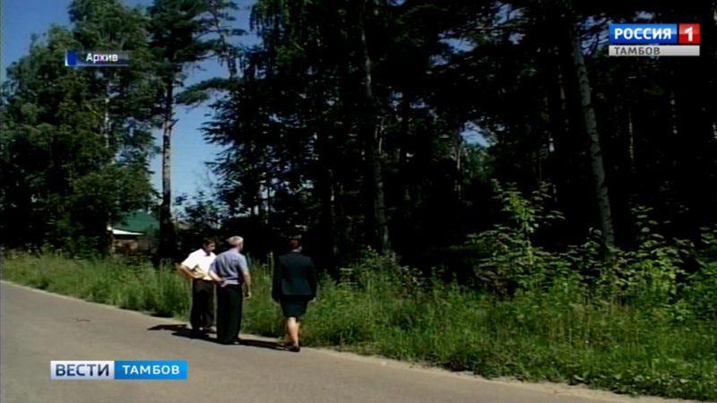 Леса региона открыты для прогулок