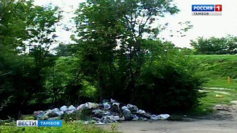 Товарищества - не товарищи: дачников портит мусорный вопрос