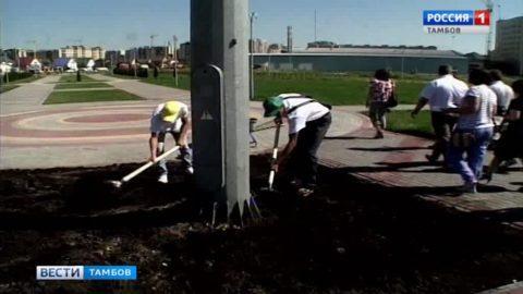Самая спортивная префектура Тамбова отметила 1 год