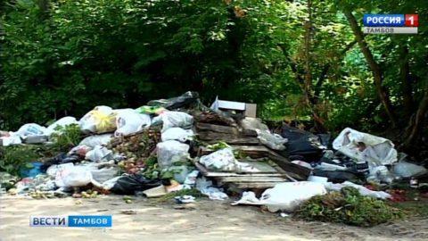 Чистота города зависит от каждого