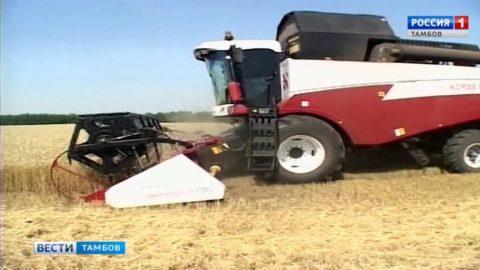 Александр Аксёнов: урожайность зерновых доходит до 35 центнеров с гектара