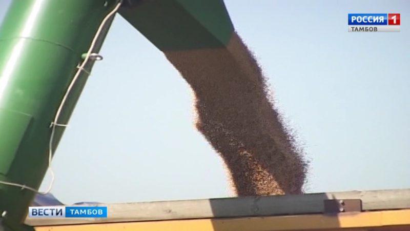 Аграрии региона собрали первый миллион тонн зерна