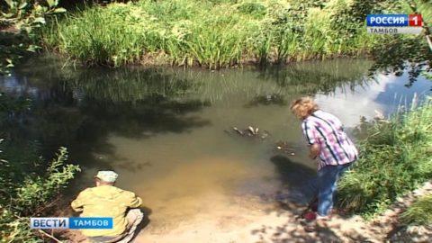 Специалисты выясняют причины замора рыбы в Первомайском районе