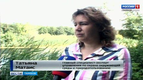 Татьяна Матаис, главный специалист-эксперт Управления по охране окружающей среды и природопользованию
