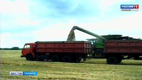 3 миллиона 700 тысяч тонн зерна планируют собрать аграрии региона