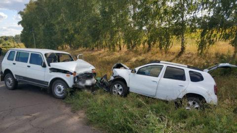 В Мичуринском районе «лоб в лоб» столкнулись Niva и Renault