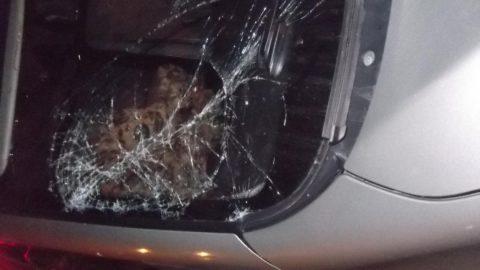 Под колеса автомобиля угодил 14-летний велосипедист