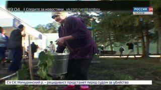 В саду областного дома ветеранов заложили вишнёвую аллею