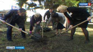 Ветераны высадили вишнёвые деревья