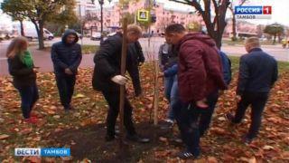 Будет вечно зелёным: в Тамбове появился сквер «Комсомольский»