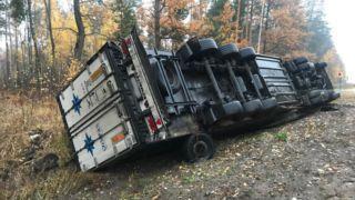 Под Тамбовом перевернулся грузовик: водитель не пострадал
