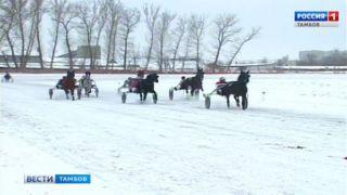 На Тамбовском ипподроме открыли зимний беговой сезон