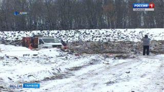 Светлана Григорьева: тарифы на вывоз мусора будут пересмотрены