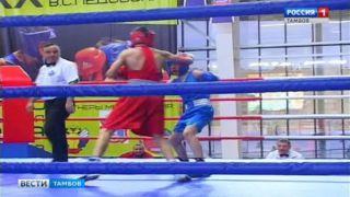 4 дня 108 боксеров будут бороться за призы Валерия Ледовских