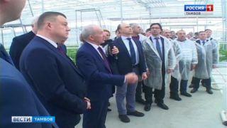 Александр Никитин: новые подходы к производству в «Тепличном» позволят снизить себестоимость продукции