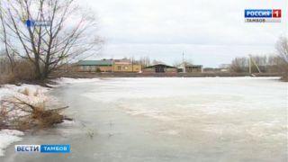 Тамбовский гидрометцентр: за сутки река Большой Ломовис поднялась на 16 сантиметров
