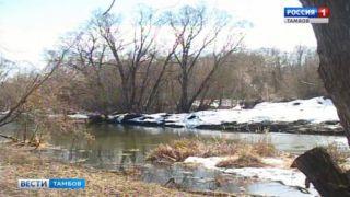 Лесной Тамбов реабилитируют после прошлогоднего паводка