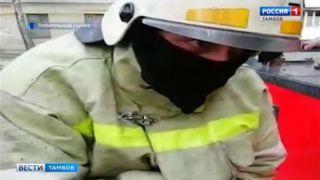 Кота-альпиниста спасли сотрудники аварийно-спасательной службы Тамбова