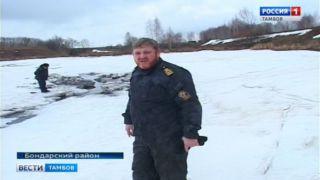 В Бондарском районе в пруду погибла рыба