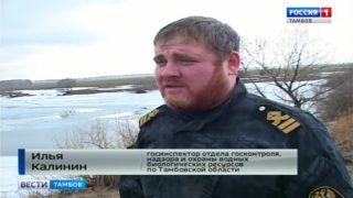 Потому что без воды: кто ответит за гибель рыбы в Бондарском районе?