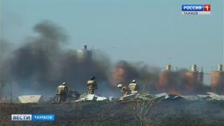 На севере Тамбова горела сухая трава в районе старой свалки