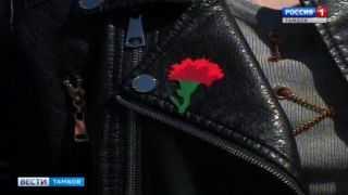 Купи «Красную гвоздику» – помоги ветерану. В Тамбове объявили начало благотворительной акции
