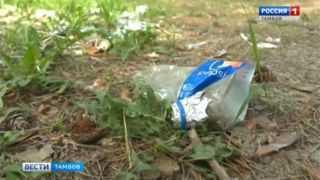 Последствия пикников обернулись экологической катастрофой