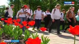 «Лётчики» и «танкисты» пробежали по центру Тамбова