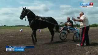 Казачья столица Мучкапского района приветствовала любителей конного спорта