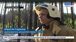 С пожарным ранцем за спиной: как тушили лесополосу в Тамбовском районе?