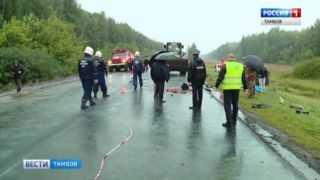 5 человек погибли в ДТП в регионе